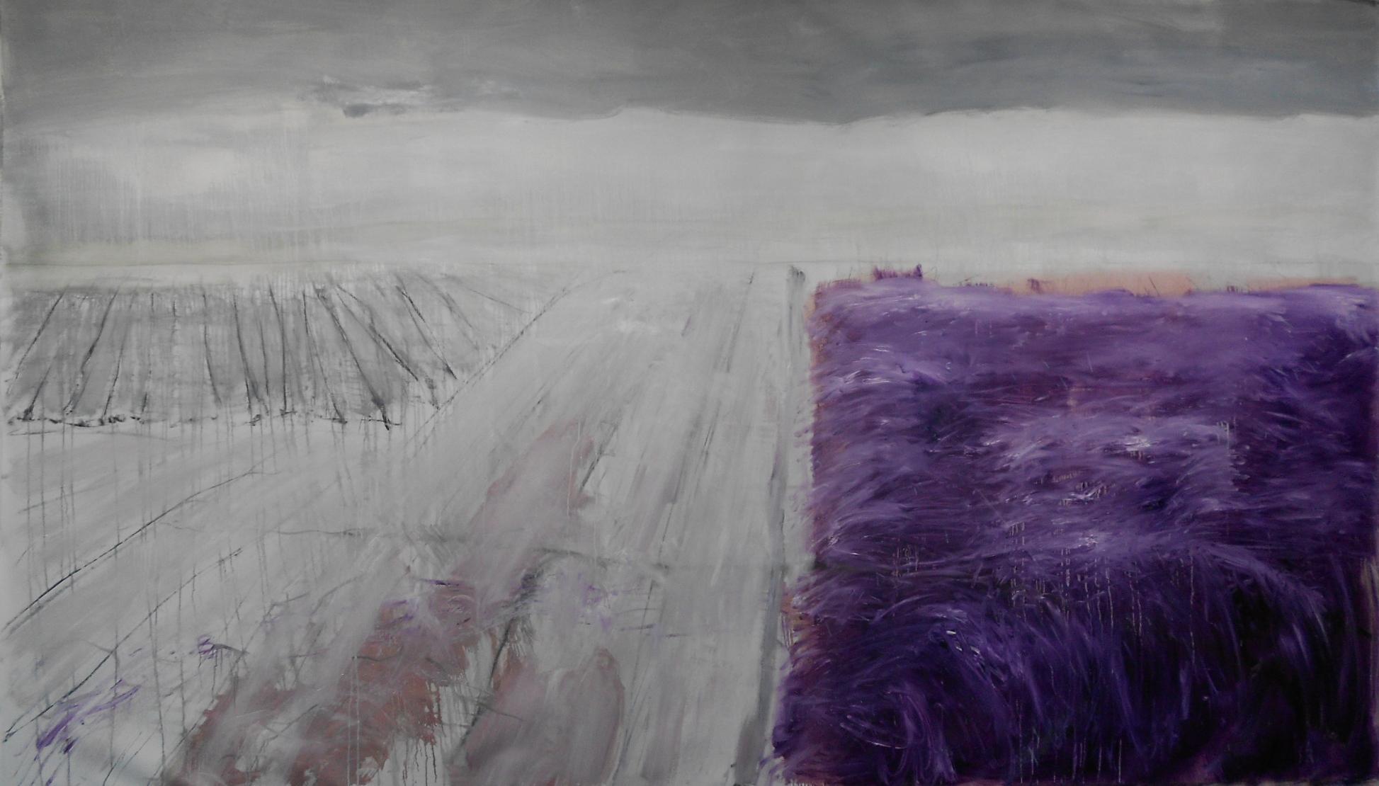 landscape|220x375cm|charcoal/oil on canvas|2013